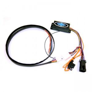 Illuminatore indiano Badlands per indicatori di direzione posteriori a LED
